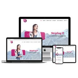 Stripling IT Web Design (1)